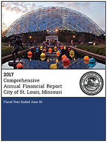 current year comprehensive annual financial report cafr