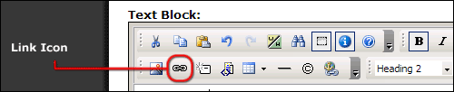 Formatted Text Block link icon