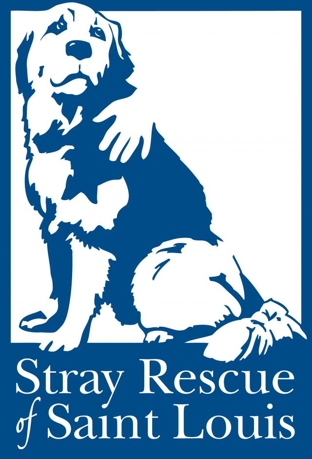 Stray Dog Rescue St Louis