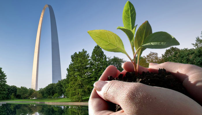 Photo of St. Louis Arch and hand holding plant