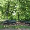 Forest Park Picnic Ground #9