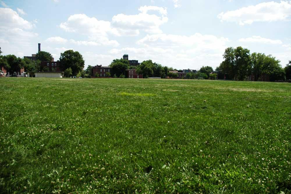 Large field in Cherokee Park