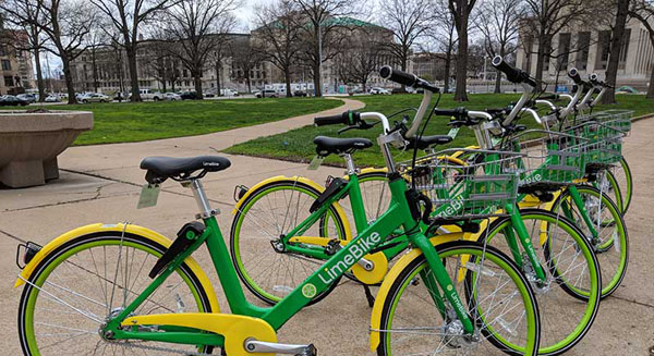 a row of lime bikes