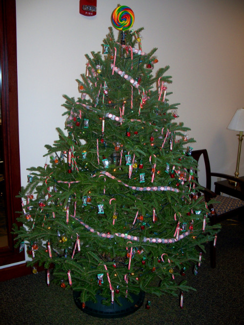 Entry in the collector of revenue christmas tree decorating contest